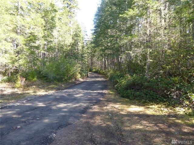 2 W Wilderness Ln, Seabeck, WA 98380 (#1601161) :: Better Properties Lacey