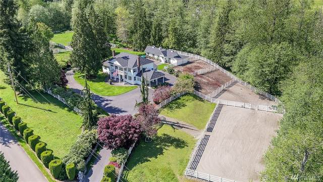 9102 171st Ave SE, Snohomish, WA 98290 (#1601173) :: Real Estate Solutions Group