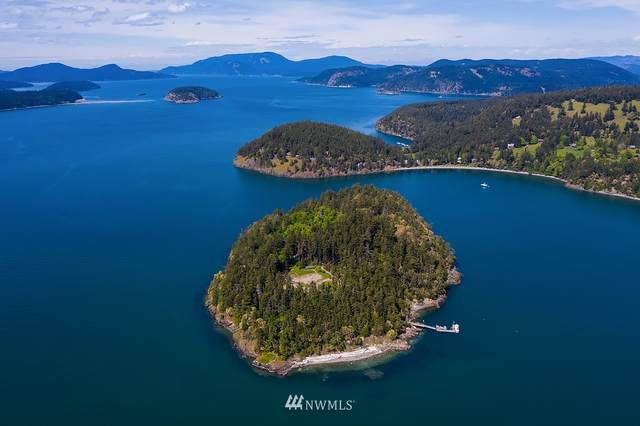1 Trump Island, Decatur Island, WA 98221 (#1601638) :: The Shiflett Group