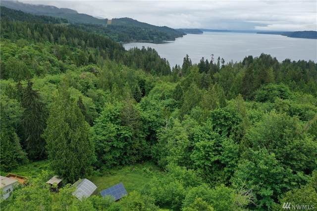 193 N Triton Heights Rd, Lilliwaup, WA 98555 (#1601666) :: M4 Real Estate Group