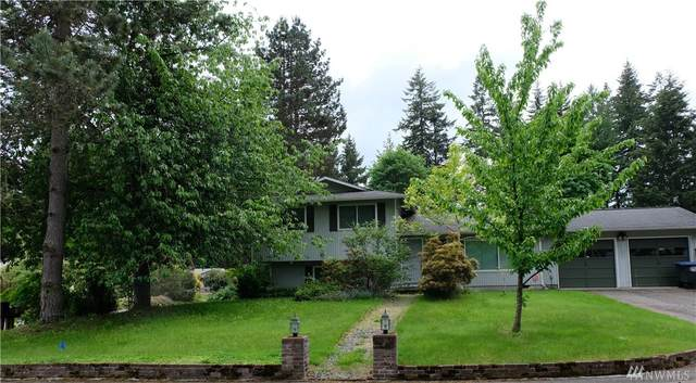 4809 33rd Ct SE, Lacey, WA 98503 (#1601791) :: Real Estate Solutions Group