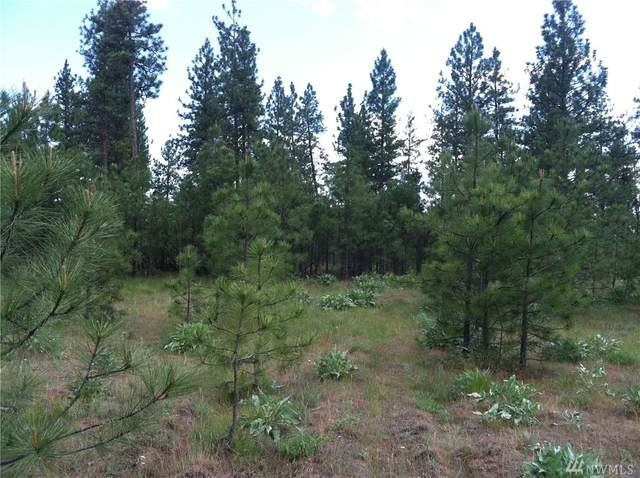 0 Highway 291, Tumtum, WA 99034 (#1602425) :: Priority One Realty Inc.