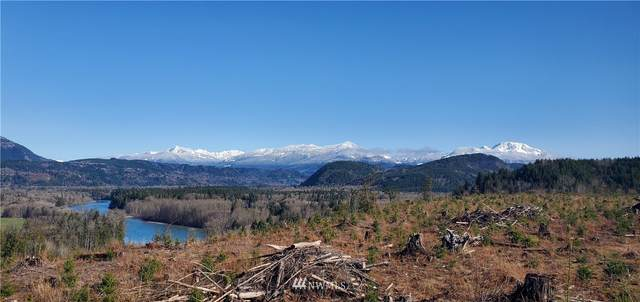 0 S. Skagit Highway, Sedro Woolley, WA 98284 (#1602851) :: Shook Home Group