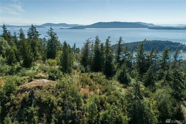 0-Lot 5 Chuckanut Heights Dr, Bellingham, WA 98225 (#1603055) :: Real Estate Solutions Group