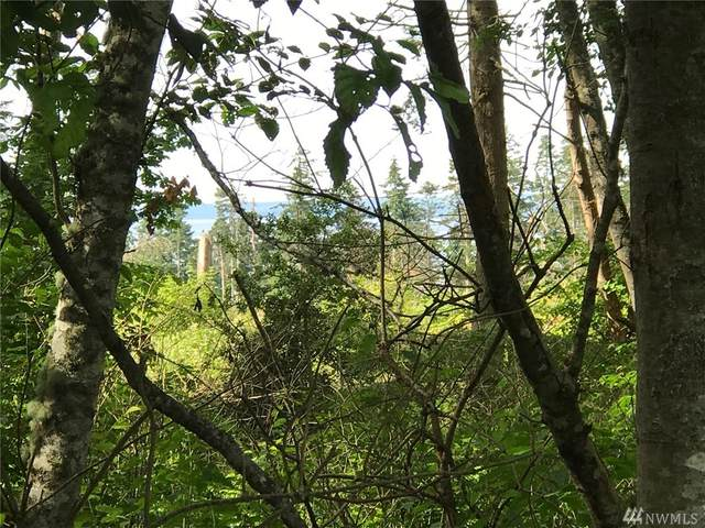 0 Admirals Dr, Coupeville, WA 98239 (#1603224) :: Real Estate Solutions Group