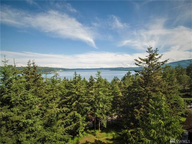 30 Eagles Rest Lane, Sequim, WA 98382 (#1603762) :: Pacific Partners @ Greene Realty