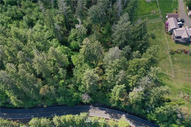 0 N Us Highway 101, Hoodsport, WA 98548 (#1603766) :: Costello Team