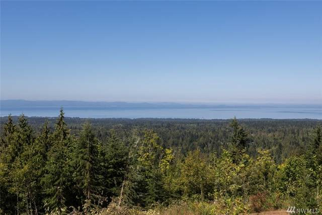 596 Watershed Rd, Port Angeles, WA 98362 (#1603789) :: Real Estate Solutions Group