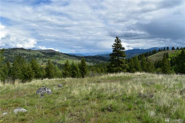 0-Lot 9&10 Hidden Meadows Lane, Malo, WA 99150 (#1604316) :: Real Estate Solutions Group