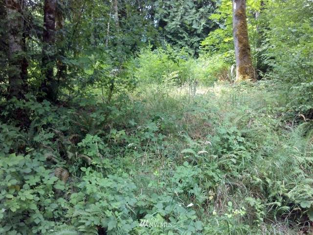 410 E Hillcrest Drive, Shelton, WA 98584 (#1604481) :: Ben Kinney Real Estate Team