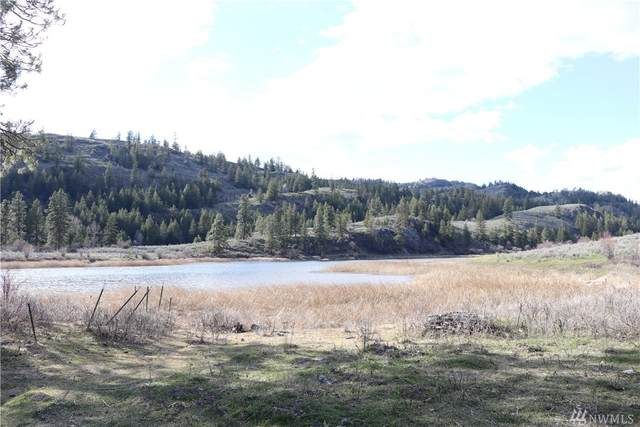 111 Tbd Rainbow Lake Rd, Oroville, WA 98844 (#1604654) :: Lucas Pinto Real Estate Group