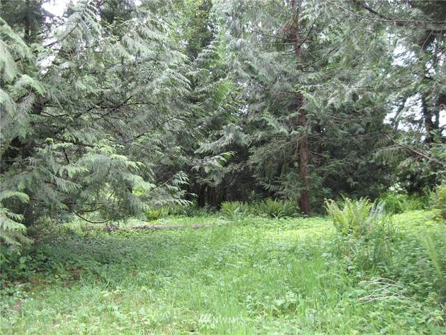 17103 Engebretsen Road, Granite Falls, WA 98252 (#1604916) :: Canterwood Real Estate Team