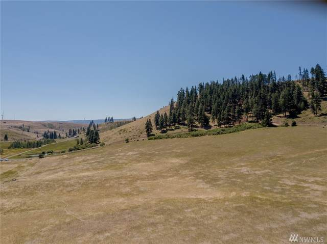 0-Lot 21B Low Road, Cle Elum, WA 98922 (#1604951) :: Real Estate Solutions Group