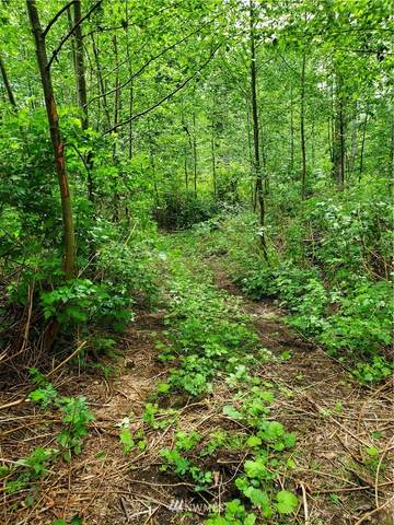 0 W Elk Run Drive, Sedro Woolley, WA 98284 (#1605177) :: My Puget Sound Homes