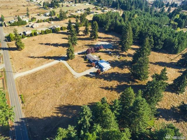 18430 Guava St SW, Rochester, WA 98579 (#1605441) :: Ben Kinney Real Estate Team
