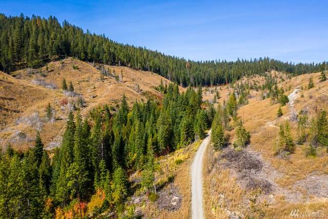 0 Dry Creek Rd Lot 6, Leavenworth, WA 98826 (MLS #1605675) :: Nick McLean Real Estate Group