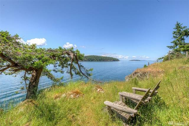 36 Spring Point Rd, Orcas Island, WA 98245 (#1606365) :: Hauer Home Team