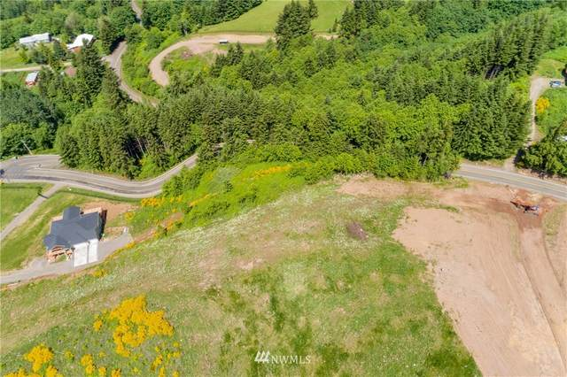 3 Green Mountain Road C, Woodland, WA 98674 (#1607116) :: Ben Kinney Real Estate Team