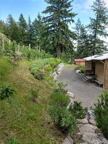 652 Vusario Lane, Orcas Island, WA 98245 (#1607716) :: Northwest Home Team Realty, LLC