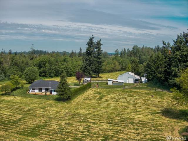 24905 SE 422nd St, Enumclaw, WA 98022 (#1607900) :: Northern Key Team