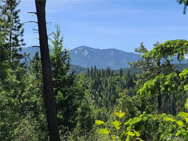 16 Kokanee Lp, Cle Elum, WA 98922 (MLS #1608038) :: Nick McLean Real Estate Group