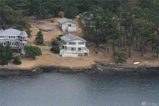 799 Cape Dr, Friday Harbor, WA 98250 (#1608068) :: KW North Seattle