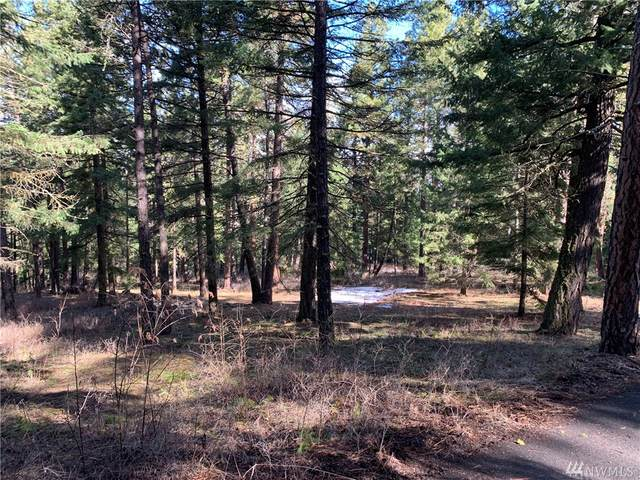 0 Lot 1 Lower Peoh Point, Cle Elum, WA 98922 (MLS #1608151) :: Nick McLean Real Estate Group