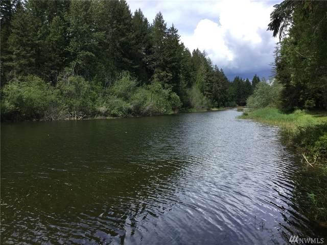 600 E Emerald Lake Dr E, Grapeview, WA 98546 (#1608257) :: Better Properties Lacey