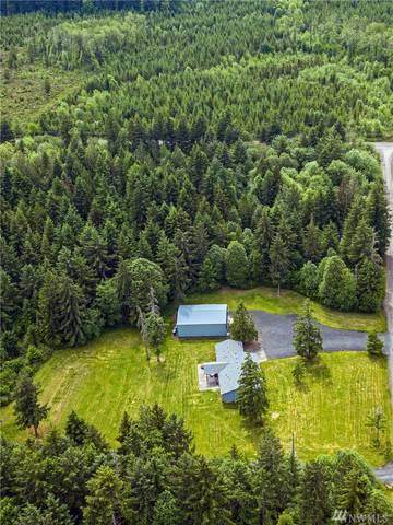 120 Brady Lane, Winlock, WA 98596 (#1608373) :: Canterwood Real Estate Team