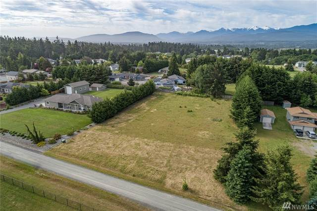 0 Klahhane Rd, Sequim, WA 98382 (#1608773) :: Real Estate Solutions Group
