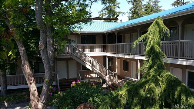 250 Tucker, Friday Harbor, WA 98250 (#1608798) :: Capstone Ventures Inc