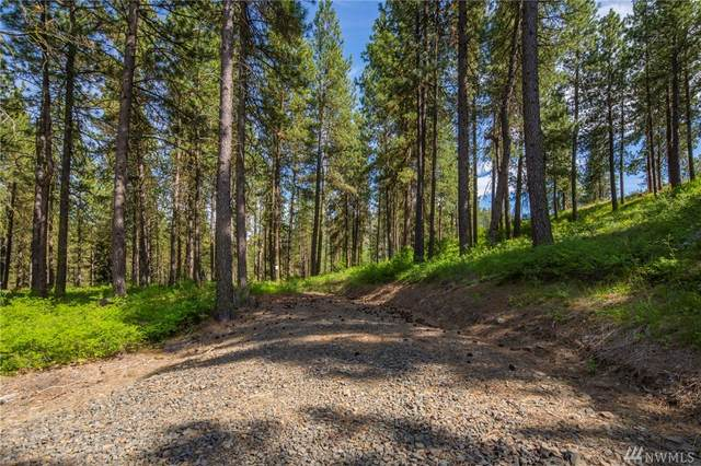 1-A Hidden Valley Rd, Cle Elum, WA 98922 (#1608929) :: Mike & Sandi Nelson Real Estate
