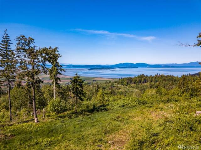 8 Blanchard Knob Trail, Bow, WA 98232 (#1609083) :: Northern Key Team
