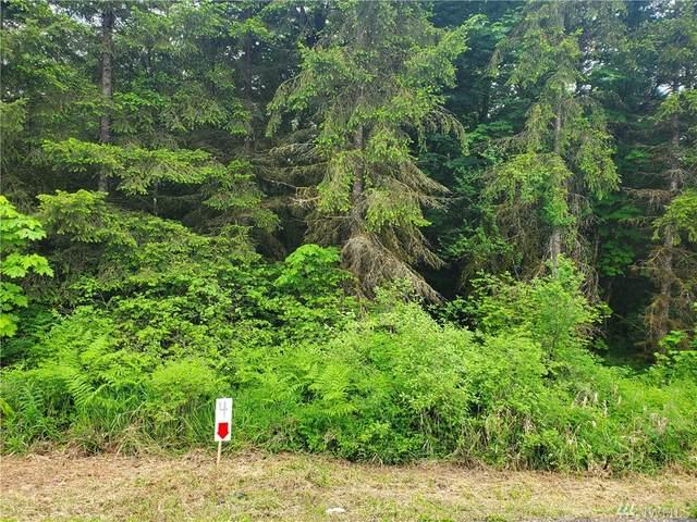 257 Avery Rd W, Napavine, WA 98596 (#1609433) :: Ben Kinney Real Estate Team