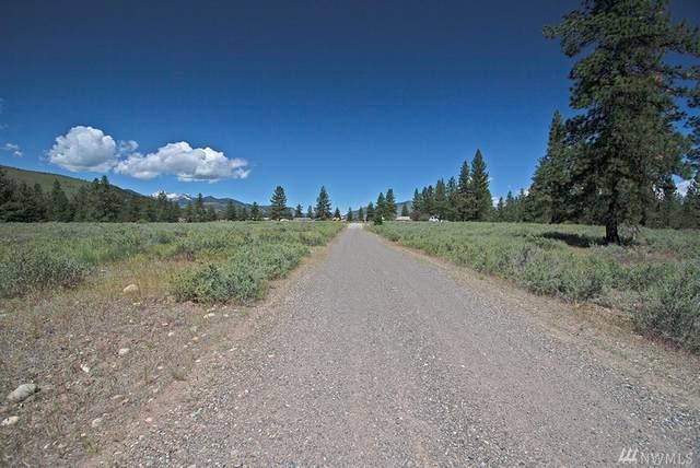 102 Horizon Flats Rd, Winthrop, WA 98862 (#1610280) :: Engel & Völkers Federal Way