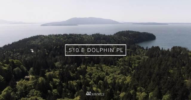 510 E Dolphin Place, Bellingham, WA 98229 (#1610442) :: Alchemy Real Estate