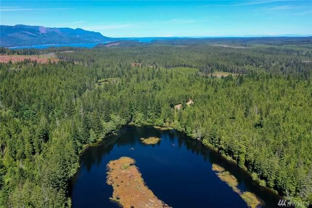 23390 W Ludvick Lake Dr, Seabeck, WA 98380 (#1610597) :: Northwest Home Team Realty, LLC