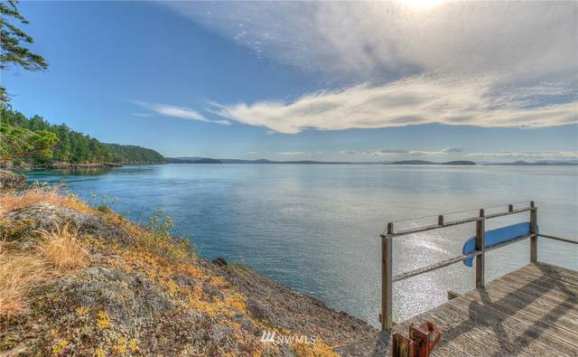1735 Cormorant Bay Road, Orcas Island, WA 98245 (#1611126) :: My Puget Sound Homes