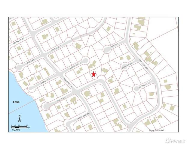 10621 108th St, Anderson Island, WA 98303 (#1611489) :: McAuley Homes