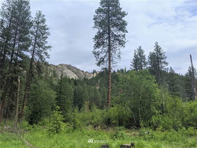 0 Mule Tail Flats Road, Leavenworth, WA 98826 (#1611832) :: My Puget Sound Homes