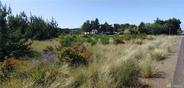 31805 I St, Ocean Park, WA 98640 (#1612222) :: Real Estate Solutions Group