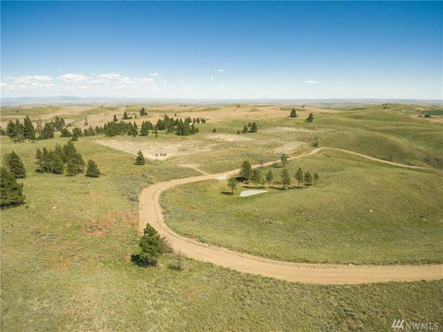 0 Road A, Orondo, WA 98843 (MLS #1612375) :: Nick McLean Real Estate Group