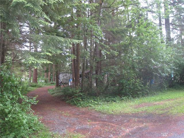 8654 Valley Ct, Maple Falls, WA 98266 (#1613643) :: Alchemy Real Estate