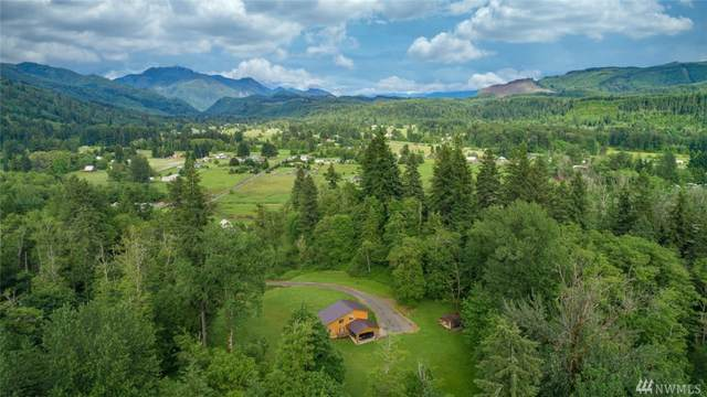 165 Lowery Rd, Glenoma, WA 98336 (#1613743) :: The Royston Team