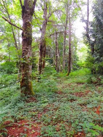 5981 NE Spruce Dr, Hansville, WA 98340 (#1614727) :: Better Homes and Gardens Real Estate McKenzie Group