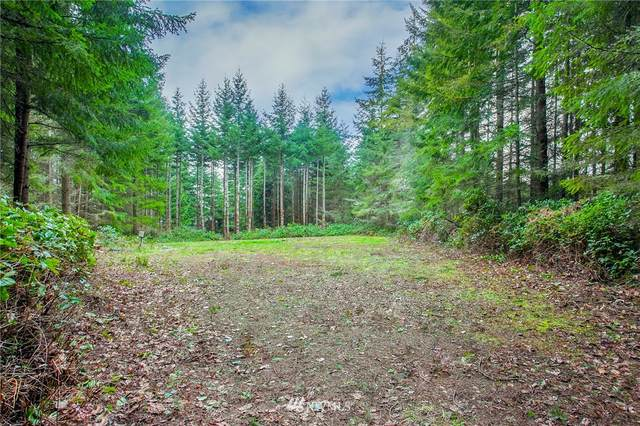 424 Skywater Drive, Port Hadlock, WA 98339 (MLS #1615062) :: Brantley Christianson Real Estate