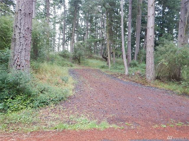 0 Hillview Terr, Friday Harbor, WA 98250 (#1615984) :: Capstone Ventures Inc
