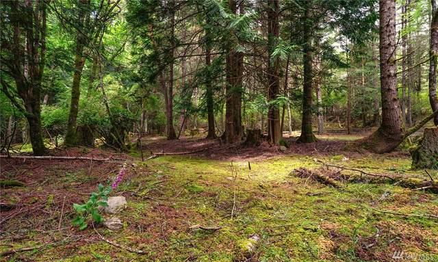 801 Shoreland Dr, Lopez Island, WA 98261 (#1616099) :: Keller Williams Realty