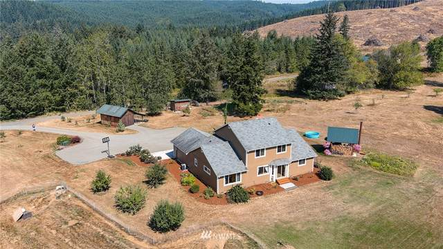 253 Lake Creek Road, Boistfort, WA 98532 (#1617149) :: McAuley Homes