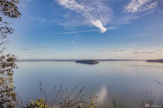 0 Lot 12 South Camano Dr, Camano Island, WA 98282 (#1617182) :: Alchemy Real Estate